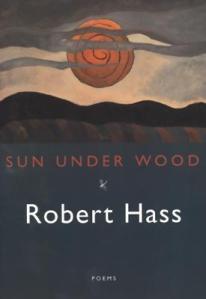 sun under wood139785